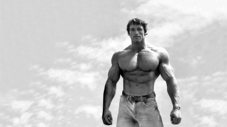 Arnold Schwarzenegger Wallpaper Fullscreen High Definition Celebrities Photo Arnold Schwarzenegger Hd Wallpaper