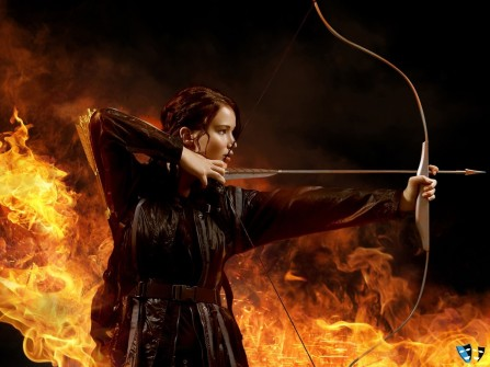 The Hunger Games Catching Fire Wallpaper Catching Fire