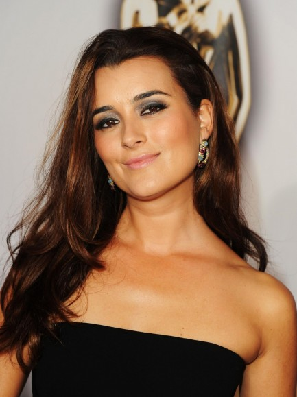 Cote De Pablo Large Picture