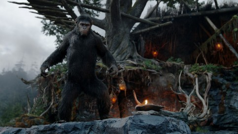 Dawn Of The Planet Of The Apes New Background Images Dawn Of The Planet Of The Apes