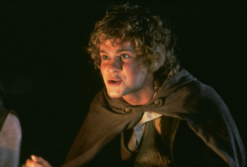 Still Of Dominic Monaghan In The Lord Of The Rings The Fellowship Of The Ring Large Picture Lord Of The Rings
