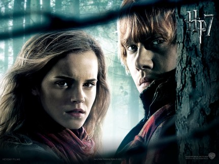 Emma Watson In Harry Potter And The Deathly Hallows Hd Desktop Background Screensaver Wallpaper Harry Potter
