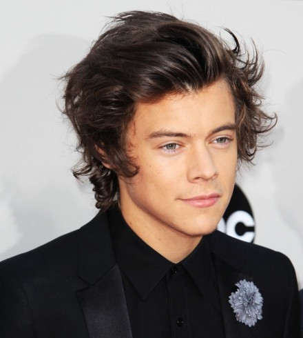 Image Personil Boy Band Harry Styles Celebrity
