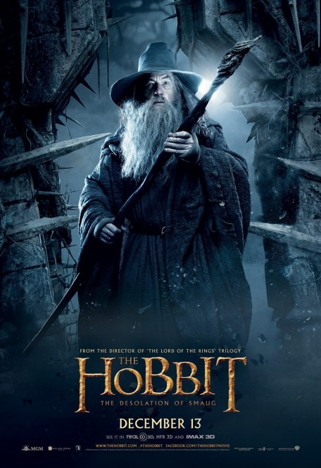 Ian Mckellen In The Hobbit The Desolation Of Smaug Movie Poster Movies