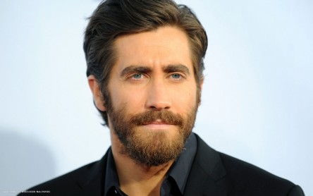Jake Gyllenhaal Hd Wallpaper Jake Gyllenhaal