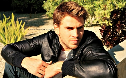 Liam Hemsworth Liam Wallpaperya Liam Hemsworth
