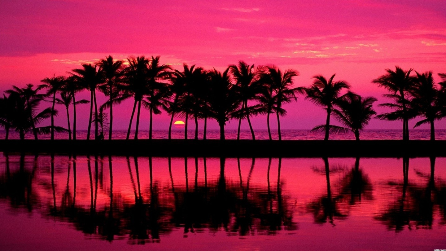 pink-beach-sunset-hd-wallpapers-backgrou