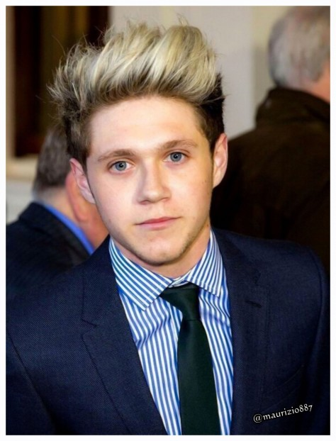 One Direction Niall Horan Niall Horan