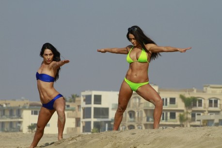Brie Bella And Nikki Bella Hot