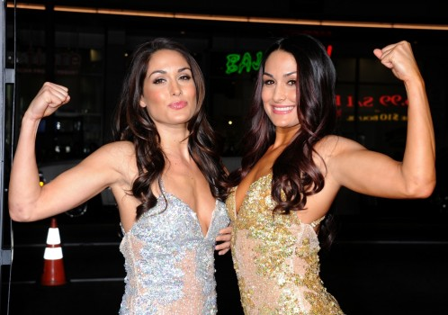 Brie Nikki Bella This Means War La Premiere Vettrinet And Brie Bella