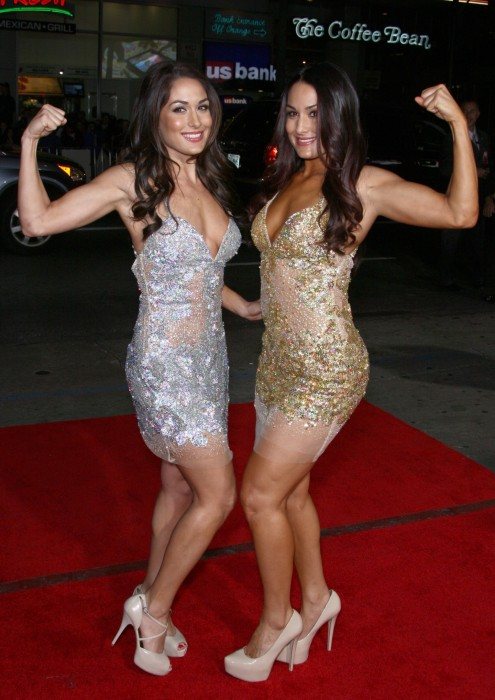Brie Nikki Bella This Means War La Premiere Vettrinet Nikki Bella