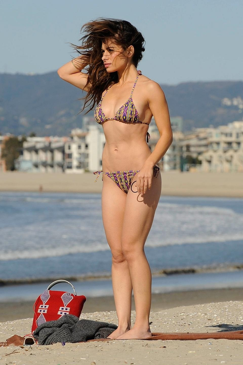 Sarah Shahi Bikini On Beach In Santa Monica Beach