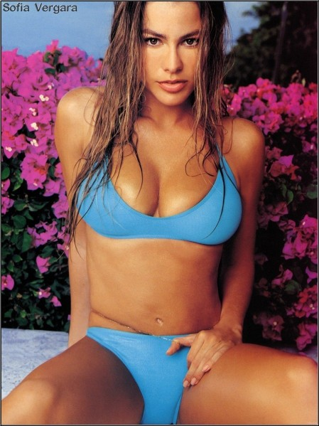 Pictures Of Sofia Vergara Actress Comedian Model Television Host Sexy