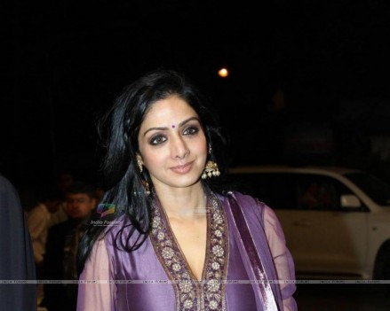 Sridevi At Videocons Venuegopal Dhoots Daughter Marriage Sridevi