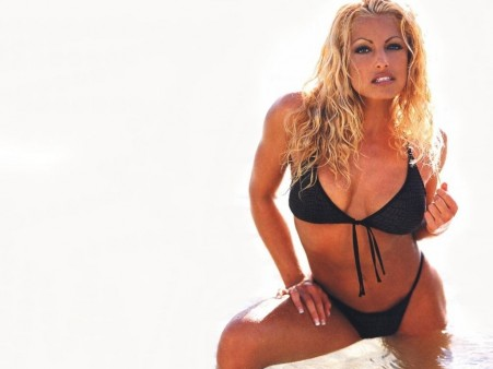Trish Stratus Wallpapers Trish Stratus