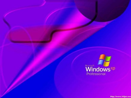 Windows Xp Wallpapers Wallpaper